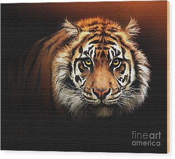 Tiger Bright Wood Print by Robert Foster