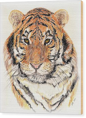 Wood Print featuring the drawing Tiger Bright by Stephanie Grant