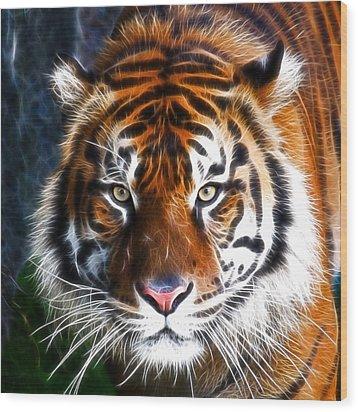 Tiger Close Up Wood Print by Steve McKinzie