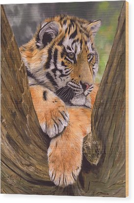 Tiger Cub Painting Wood Print by David Stribbling