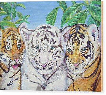 Tiger Cubs Wood Print by Thomas J Herring