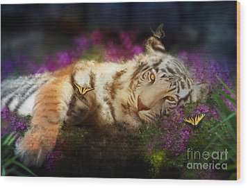 Tiger Dreams Wood Print by Aimee Stewart