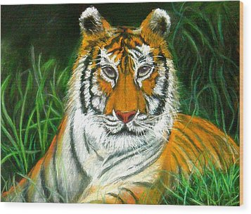 Wood Print featuring the pastel Tiger Eyes - Pastel by Antonia Citrino