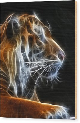 Tiger Fractal 2 Wood Print by Shane Bechler