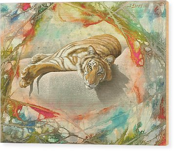 Tiger Laying In Abstract Wood Print by Paul Krapf