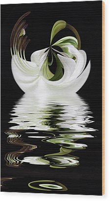 Tiger Lily Reflected Wood Print by Cyndy Doty
