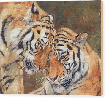 Tiger Love Wood Print by David Stribbling