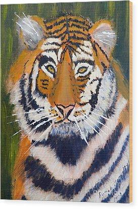 Tiger Wood Print by Pamela  Meredith