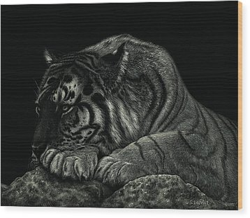 Wood Print featuring the drawing Tiger Power At Peace by Sandra LaFaut