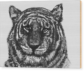 Wood Print featuring the painting Tiger by Shabnam Nassir