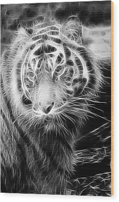 Tiger Tiger Wood Print by Mark Kember