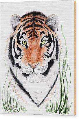Tiger Tiger Where Wood Print