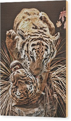 Wood Print featuring the photograph Tigers by Angel Jesus De la Fuente