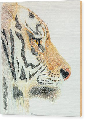 Wood Print featuring the drawing Tiger's Head by Stephanie Grant