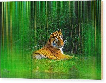 Tigers Misty Lair Wood Print by Glenn Feron