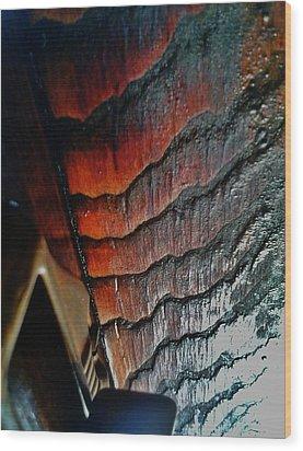 Tigerwood Wood Print by Jaime Neo