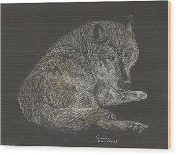 Timber Wolf Wood Print