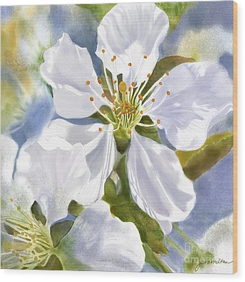 Time To Blossom Wood Print by Joan A Hamilton