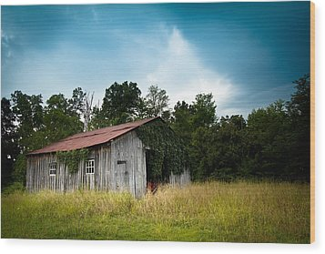 Tin Roof...ivy Covered Barn Wood Print by Shane Holsclaw
