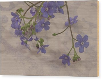 Wood Print featuring the photograph Tiny Blue by Sandra Foster