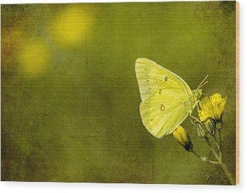 Tiny Green Dancer Wood Print by Bill Tiepelman