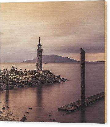 Tiny Lighthouse Wood Print by Tony Locke
