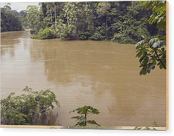 Tiputini River, Ecuador Wood Print by Science Photo Library