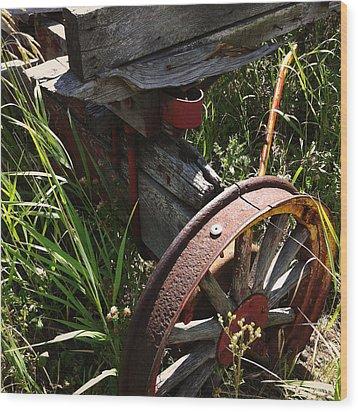 Wood Print featuring the photograph Tireless by Meghan at FireBonnet Art