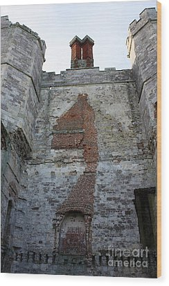 Titchfield Abbey From Within Wood Print by Terri Waters