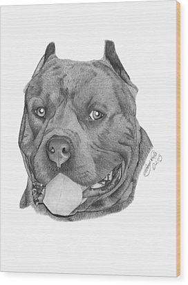 Wood Print featuring the drawing Titus - 024 by Abbey Noelle