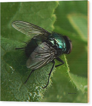 To Be The Fly On The Salad Greens Wood Print