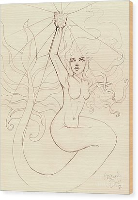 ...to Catch A Falling Star... Sketch Wood Print by Coriander  Shea