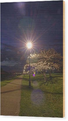 To Light The Way Wood Print by Shirley Tinkham
