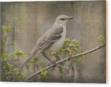 To Still A Mockingbird Wood Print