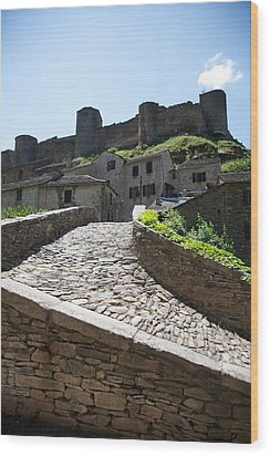 To The Castle Above Wood Print by Lee Stickels