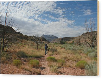 Wood Print featuring the photograph To The Desert by Jon Emery