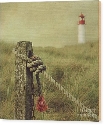 To The Lighthouse Wood Print by Hannes Cmarits