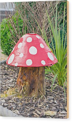 Toadstool Wood Print by Tom Gowanlock