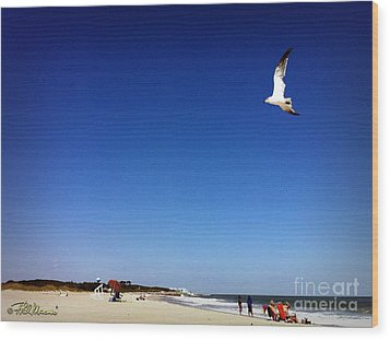 Wood Print featuring the photograph Today I Will Soar Like A Bird by Phil Mancuso