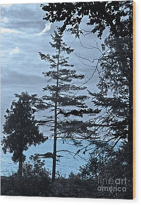 Toft Point Blue Wood Print