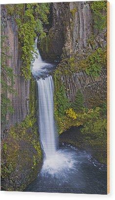 Toketee Falls Wood Print