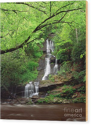 Tom Branch Falls 2009 Wood Print