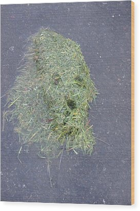Wood Print featuring the photograph Too Much Grass Man by Marie Neder