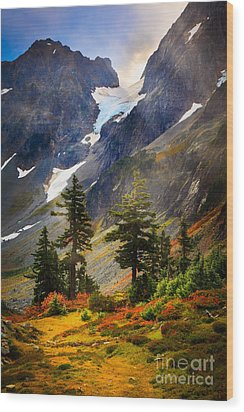 Top Of Cascade Pass Wood Print by Inge Johnsson