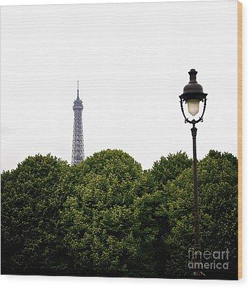 Top Of The Eiffel Tower And Street Lamp. Paris.france. Wood Print by Bernard Jaubert