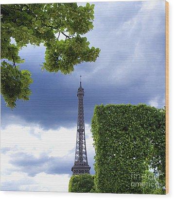 Top Of The Eiffel Tower. Paris. France. Wood Print by Bernard Jaubert