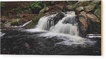 Top Of The Falls Wood Print by Mike Farslow