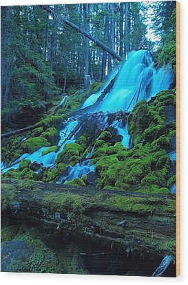 Top Part Of Clearwater Falls Wood Print by Teri Schuster