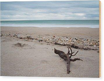 Topsail Island Driftwood Wood Print by Shane Holsclaw
