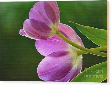 Topsy-turvy Tulips Wood Print by Deb Halloran